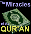 The Miracles of Quran
