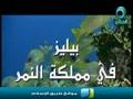 فيلم وثائقي .. بيليز فى مملكة النمر